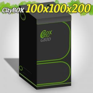 CITYBOX TWIN 100X100X200