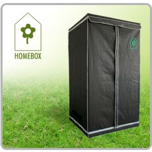 Chambre de culture Homebox© S