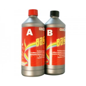 Ecolizer Basics A+B 1L