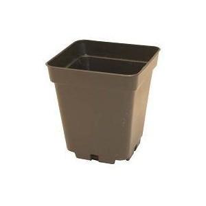 Pot carré (10X10xH11cm) - 1L