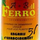 Ferro Enracinement A+B 2x5L