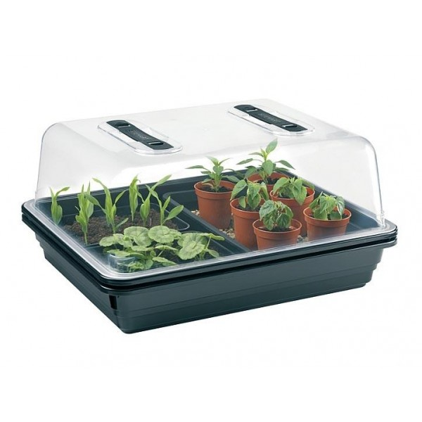 mini serre plastique rigide 52 x 42 x h 24 cm cityplantes growshop en ligne. Black Bedroom Furniture Sets. Home Design Ideas