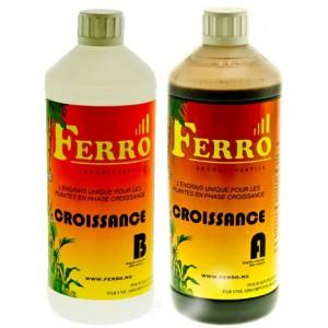 Ferro Grow A+B 2x1 litre