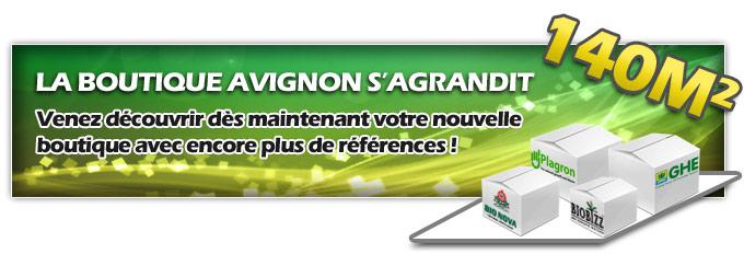 Growshop à Avignon s'agrandit