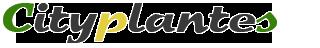 CityPlantes - Growshop en ligne